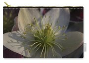 Light And Shadow Hellebore Flower Carry-all Pouch