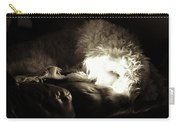 Light As He Tries To Sleep Carry-all Pouch