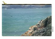 Light House And Sea Lions Carry-all Pouch