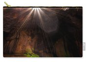 Light Shine Down Carry-all Pouch