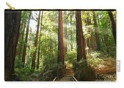 Light The Way - Redwood Forest Of Muir Woods National Monument With Sun Beam. Carry-all Pouch
