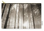 Light Through Forest Carry-all Pouch