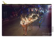 Lighted Pony Carry-all Pouch