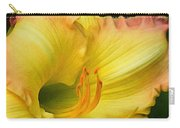Lilied Curves Carry-all Pouch