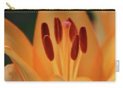 Lily - American Cheerleader 15 Carry-all Pouch