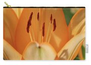 Lily - American Cheerleader 19 Carry-all Pouch