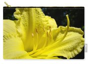 Lily Flower Artwork Yellow Lilies 1 Giclee Art Prints Baslee Troutman Carry-all Pouch