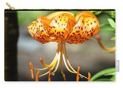 Lily Flowers Art Orange Tiger Lilies Giclee Baslee Troutman Carry-all Pouch