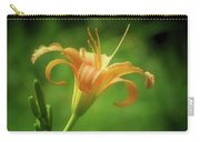 Lily Picture - Daylily Carry-all Pouch