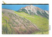 Lime Creek Canyon Carry-all Pouch