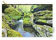 Limestone Waters Carry-all Pouch