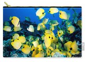 Lined Butterflyfish Carry-all Pouch