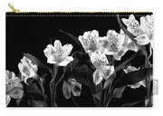 Lined Up Carry-all Pouch by Diane Reed