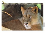 Lioness 3 Carry-all Pouch