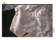Lion's Gaze Carry-all Pouch by Todd Blanchard