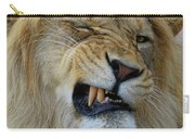 Lions Wink Carry-all Pouch