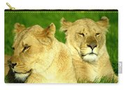 Lions Xviii Carry-all Pouch