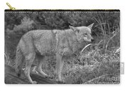 Listening Intently Closeup Black And White Carry-all Pouch