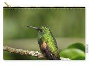 Little Hummingbird Carry-all Pouch