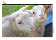 Little Lambs Eat Straw Not Ivy Carry-all Pouch