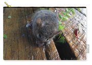 Little 'mighty Mouse' Carry-all Pouch