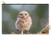 Little Owl Chick Carry-all Pouch