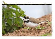 Little Ringed Plover Carry-all Pouch