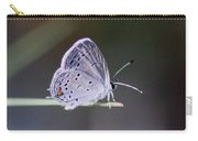 Little Teeny - Butterfly Carry-all Pouch