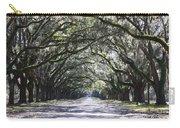 Live Oak Lane In Savannah Carry-all Pouch
