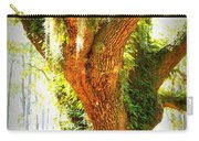 Live Oak With Cypress Beyond Carry-all Pouch