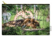 Living In Harmony - Lion Carry-all Pouch