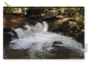 Living Streams Carry-all Pouch