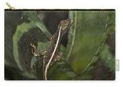 Lizard 2 Carry-all Pouch