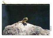 Lizard Rock Carry-all Pouch