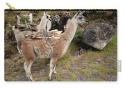 Llamas Carrying Firewood Carry-all Pouch