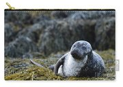 Loch Dunvegan's Harbor Seal Carry-all Pouch