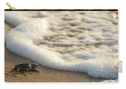 Loggerhead Turtle Hatchling 4 Delray Beach Florida Carry-all Pouch