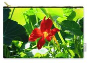 Lone Nasturtium   Carry-all Pouch