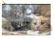 Lonely Kittens Behind The Glass Carry-all Pouch