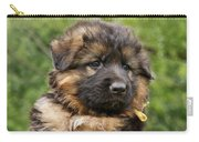Long Coated Puppy Carry-all Pouch