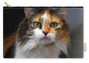 Long Haired Calico Cat Carry-all Pouch
