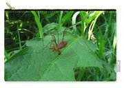 Long Legged Harvestman Carry-all Pouch
