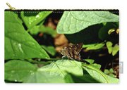 Long Tail Skipper Butterfly 1 Carry-all Pouch