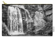 Looking Glass Falls Carry-all Pouch