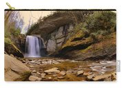 Looking Glass Falls Pisgah National Forest 2 Carry-all Pouch