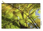 Looking Up To A Beautiful Sunglowing Fern In A Tropical Forest Carry-all Pouch