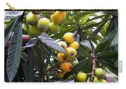 Loquat Exotic Tropical Fruit  2 Carry-all Pouch