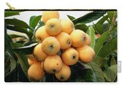 Loquat Exotic Tropical Fruit 4 Carry-all Pouch