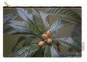 Loquat Fruit Carry-all Pouch