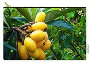 Loquats In The Tree 4 Carry-all Pouch